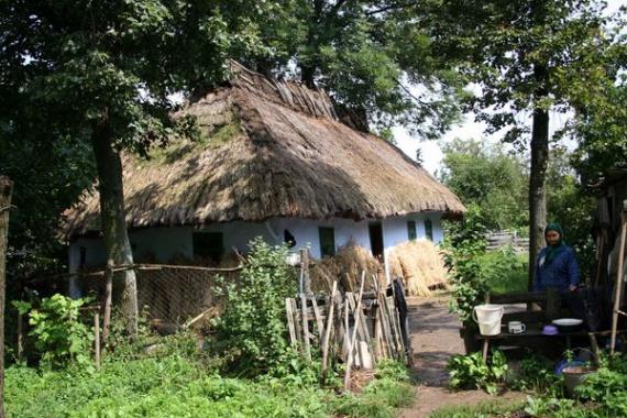 Экодом своими руками: дом с соломенной крышей