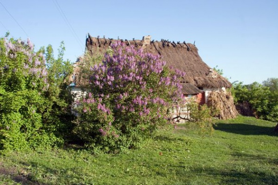 Экодом своими руками: дом из глины и соломы